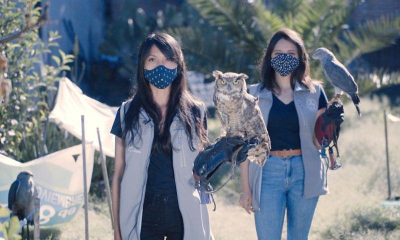 Estrategias biológicas para rescate y conservación de aves rapaces, proyecto ganador de Por Amor a México