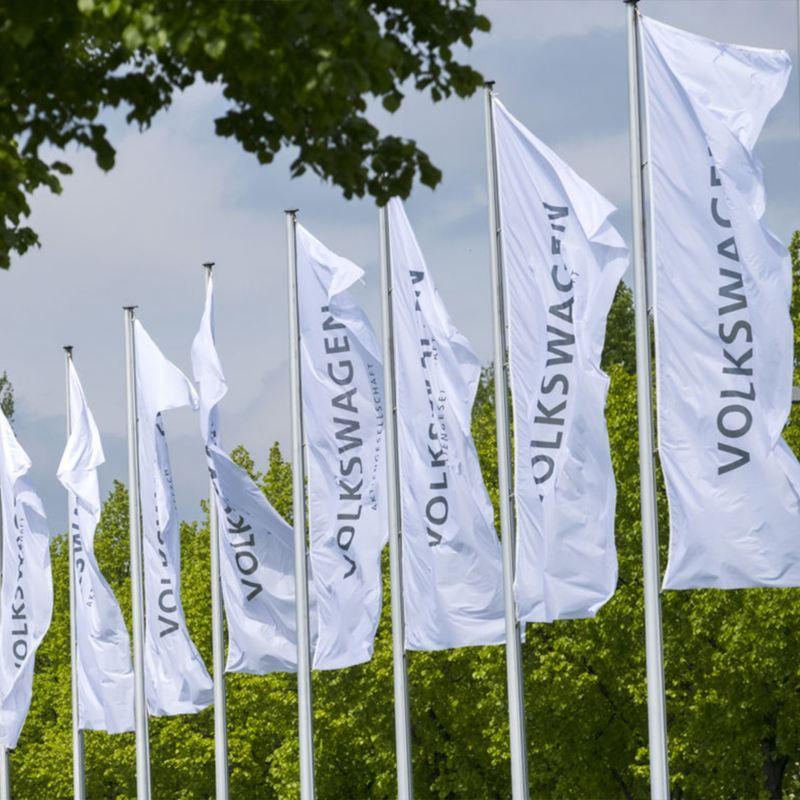 Banderines del grupo Volkswagen