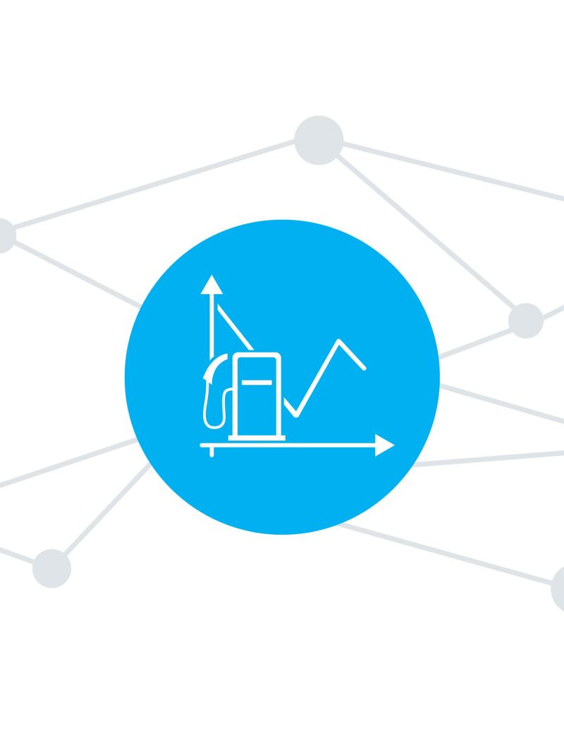 Die Verbrauchsanalyse der We Connect Fleet App.