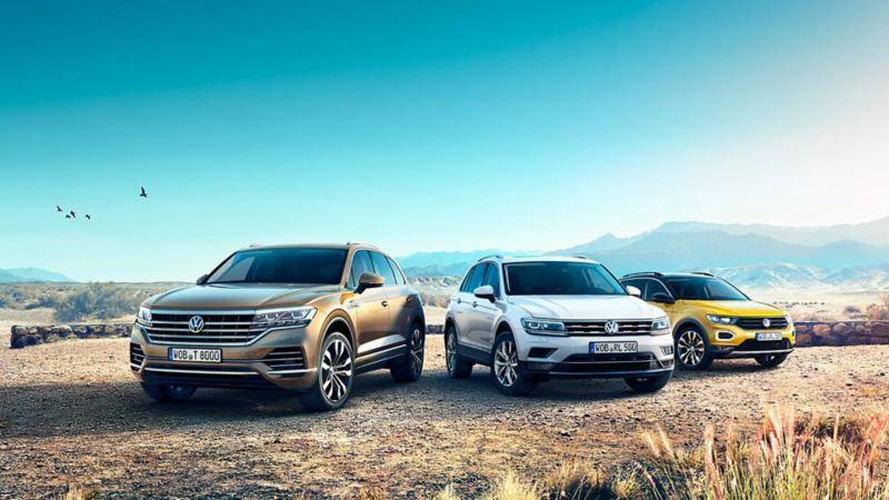 Mehrere Volkswagen stehen in der Wildnis