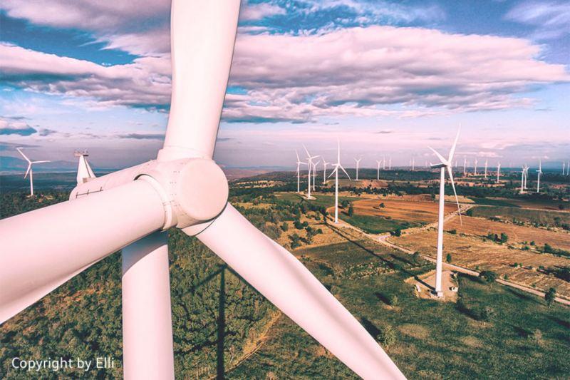 Windpark in der Natur