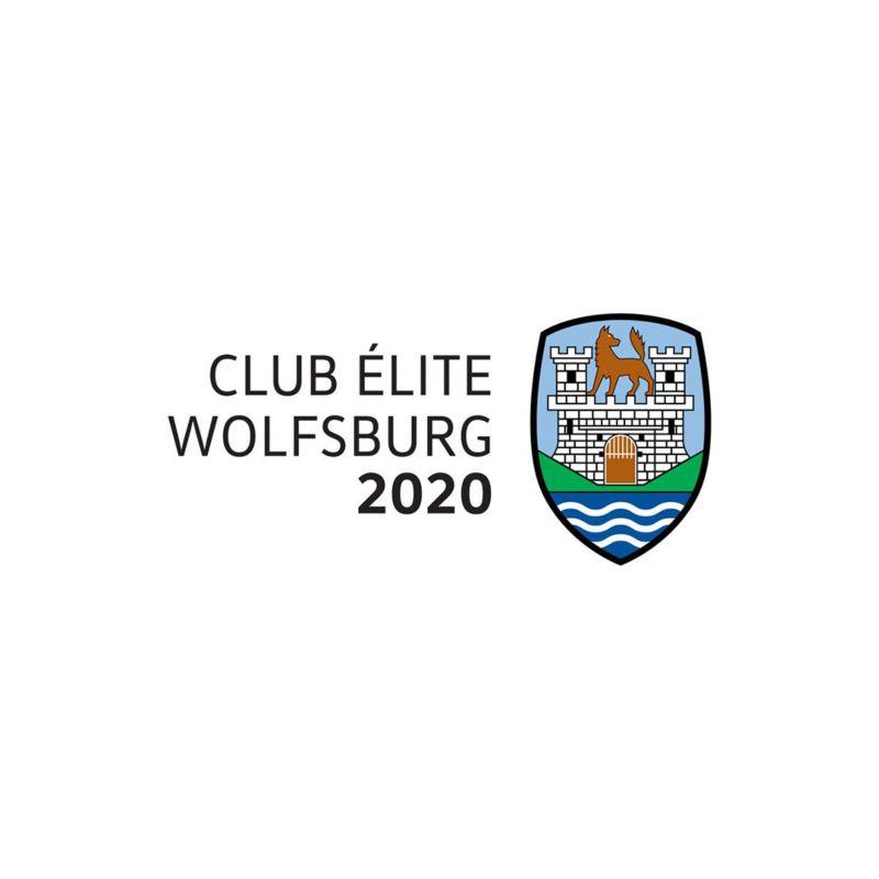 club wolfsburg logo