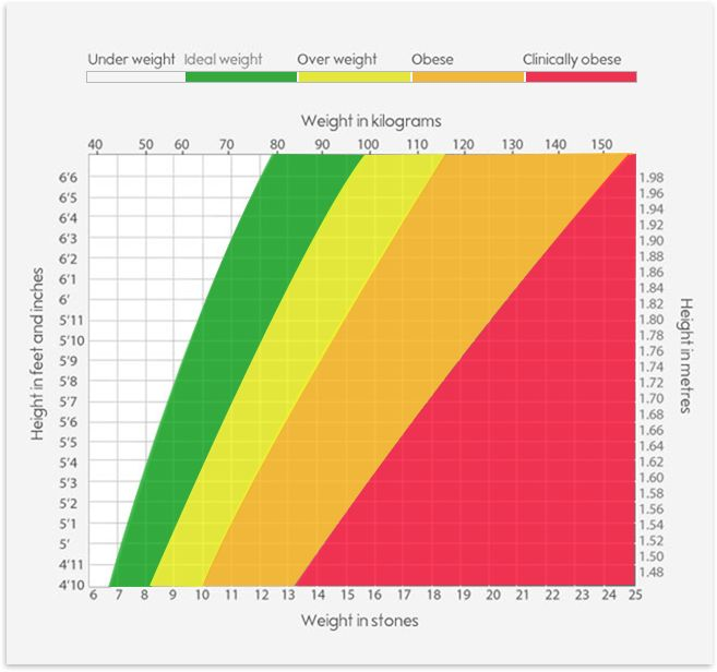 BMI calculator | Weight loss | Waitrose