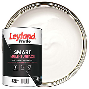 Leyland Trade Smart Matt Brilliant White 5L