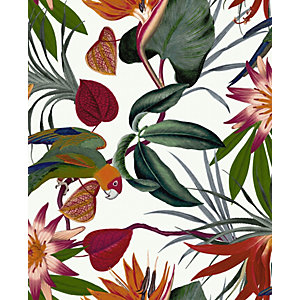 Superfresco Easy Parrot White Wallpaper 10m