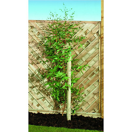 Wickes Timber Garden Tree Stake - 50mm x