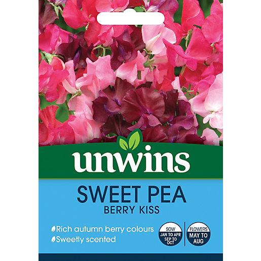 Unwins Berry Kiss Sweet Pea Seeds