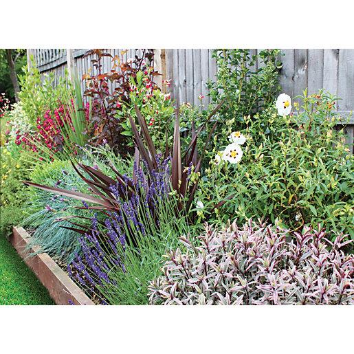 Garden On A Roll Mediterranean Border - W600mm