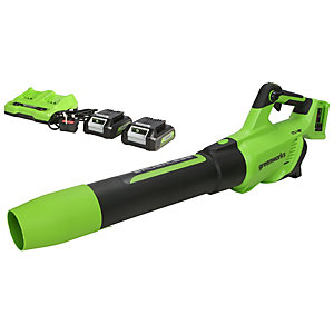 Greenworks 48v (2 X 24V) Axial Blower with 2 x 2ah Battery & charger