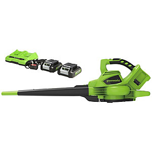 Greenworks 48v (2 X 24V) Blow & Vac C/w 2 x 4ah Battery & Charger