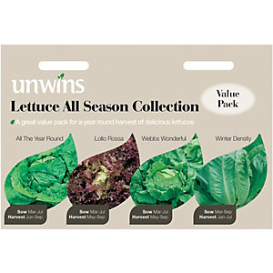 Unwins All Season Collection Lettuce Seeds