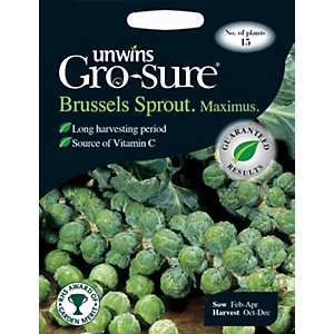 Unwins Maximus F1 Brussels Sprout Seeds