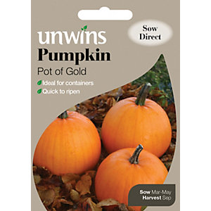 Unwins Pot Of Gold Pumpkin Seeds
