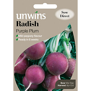 Unwins Purple Plum Globe Radish Seeds