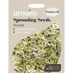 Unwins Sprouting Rocket Seeds