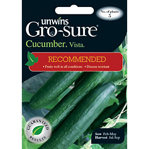 Unwins Vista F1 Cucumber Seeds